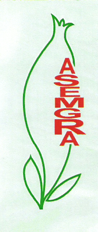Asemgra