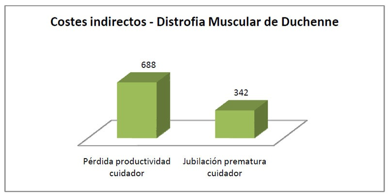 2012-05-Costes-indirectos-DMD